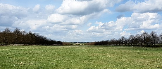 South Avenue looking towards Wimpole Hall (April 2019)